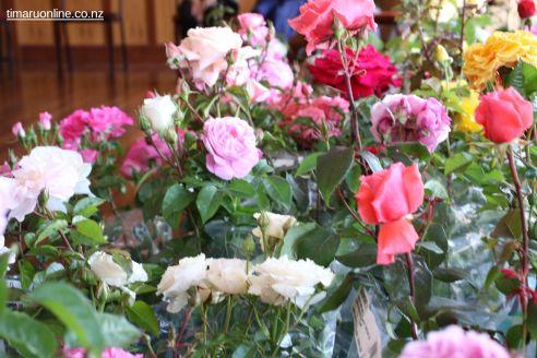 Rose Festival 0084